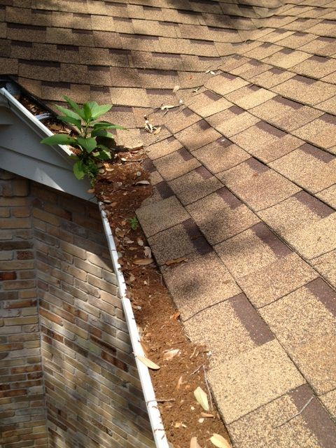 New Braunfels Roof Inspection